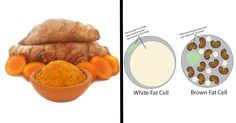 4 Ways Eating Turmeric Transforms Regular Fat-Storing Cells Into Fat-Burning Ones via @dailyhealthpost