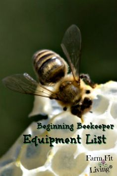 Beginning Beekeeping: Getting Started with Equipment