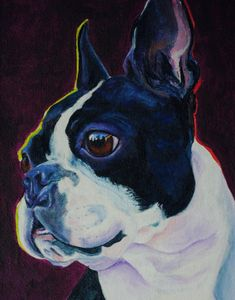 """Acrylic Painting of a Boston Terrier """"On the Lookout"""""""