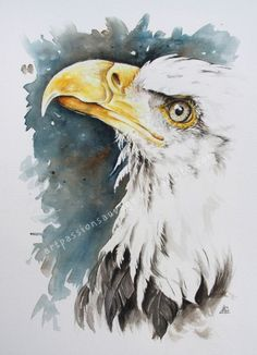 Watercolor Paintings Of Animals, Watercolor Bird, Animal Paintings, Site Art, Eagle Drawing, Eagle Painting, Let's Make Art, Eagle Art, Bird Artwork