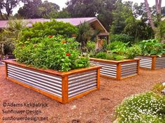 raised bed garden design - Google Search
