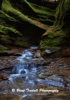 "Rocky Hollow Canyon at Turkey Run State Park, Marshall, Indiana. For more, see ""Brent Tindall Photography"" on facebook."