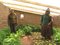 Walipini underground DIY greenhouse