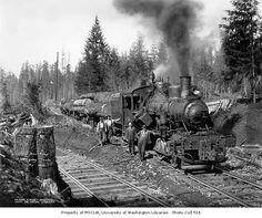 Schafer Brothers Logging Co. #103 - s/n 1267 Built 12-1912.