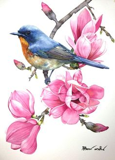 Likes, 49 Kommentare - Kitipong Ti ( . Watercolor Bird, Watercolor Drawing, Painting & Drawing, Watercolor Paintings, Bird Artwork, Pintura Country, Bird Drawings, Botanical Art, Animal Paintings