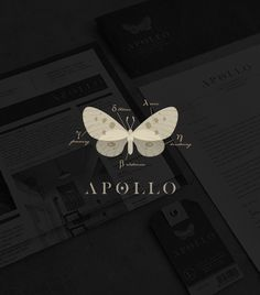 Apollo / logo design / branding / identity / butterfly / moth / clothing label / modern twist / by Tiffany Hsu