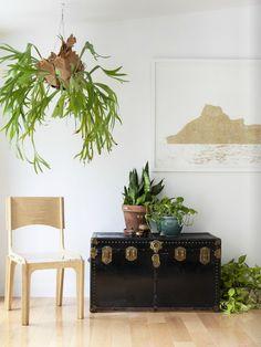 Shaun & Todd's home — Covet Garden