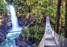 9 Kid-Friendly Hikes In British Columbia That Are Under 2 Kilometers Us Travel, Family Travel, Bay Photo, Family Adventure, Vancouver Island, Staycation, Travel Essentials, Nice View, British Columbia