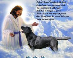 Yellow Labrador Retriever Dog Memorial w/Jesus Personalized w/Pet's Name-New Item Pet Memorial Gifts, Cat Memorial, Homeless Dogs, Labrador Retriever Dog, Therapy Dogs, Pet Names, Dog Life, Verses, Pets