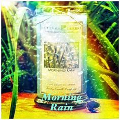 Morning Rain by Jewelry Candles.  I ordered this one!  I can't wait to get it!  I want it so bad, lol.  #JewelryCandles