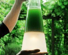 Latro Lamp Algae-Powered Latro Lamp Awesome!!! Transforms CO2 Into Light http://inhabitat.com/algae-powered-latro-lamp-transforms-co2-into-light/#