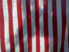 Maar deze strepen waren zo mooi rood dat ik ook een paar kleurenfoto's maakte