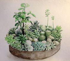 arrangement of cactuses Succulents In Containers, Cacti And Succulents, Artificial Grass Rug, Indoor Plants, Pot Plants, Succulent Arrangements, Succulent Terrarium, Garden Stones, Container Gardening
