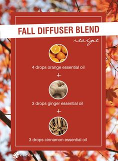 Essential Oils for Fall - blend these oils and add to an electric or candle diffuser