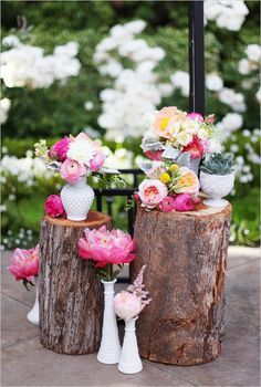 Flowers and tree trunks