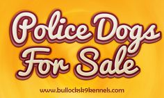 Browse this site http://www.facebook.com/Police-k9s-for-sale-684762338333087 for more information on Police Dog Training. Follow us http://www.aboutus.com/police_k9_dogs_for_sale