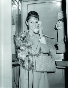 Audrey Hepburn with her dog, Mr. Famous. (Paramount Pictures)