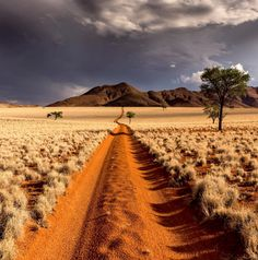 The Desert of Namibia : pics