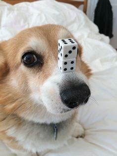 Your turn!! ~ Hazel