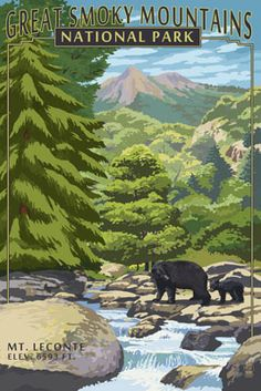 Great Smoky Mountains National Park, Tennesseee - Leconte Creek & Bear Family - Lantern Press Artwork (Art Print Available) Great Smoky Mountains, Rocky Mountains, National Park Posters, National Parks, Retro Poster, Smoky Mountain National Park, Stock Art, Vintage Travel Posters, Asheville Nc