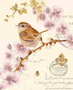 Art In Motion check her site… Bird Illustration, Illustrations, Vintage Prints, Vintage Art, Collages D'images, Decoupage Printables, Cute Birds, Vintage Ephemera, Vintage Flowers