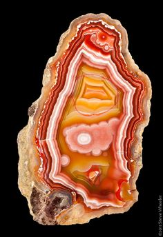 and then there is this red circle? Orange Crystals, Stones And Crystals, Minerals And Gemstones, Rocks And Minerals, Agate, Gem Hunt, Beautiful Rocks, Rocks And Gems, Scandinavian Christmas