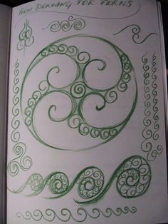 Circinate venation drawn- the fiddleheads~