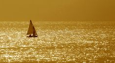 Golden Sea. Royalty Free Stock Photography - Image: 7036197