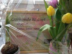 #NLdoet #Zonnebloem