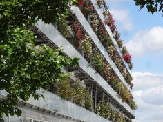 In Bordeaux, Lacaton & Vassal is transforming a housing complex of 530 flats by adding prefabricated balconies, enlarging windows, and creating enclosed winter gardens. These are modest steps with dramatic results, and a renewed pleasure in personal space.