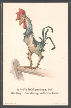 Divided Back Postcard Rooster Charles Twelvetrees Rooster Painting, Rooster Art, Red Rooster, Chicken Signs, Chicken Art, Animal Paintings, Animal Drawings, Cartoon Rooster, Cartoon Art