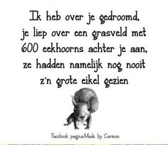 :-) Love Quotes, Funny Quotes, Dutch Quotes, Sarcasm Humor, Introvert, Positive Quotes, Qoutes, Haha, Funny Pictures