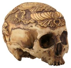 The word Kapala is a Sanskirt term meaning skull, bowl, vessel, begging bowl and is a decorative human skull used as a ritual implement in both Hindu and Buddhist Tantra. They were often carved with d