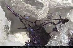 Akanthit auf Tetraedit in Quarzdruse :  Clara Mine,Rankach valley, Oberwolfach, Wolfach, Black Forest, Baden-Würtemberg, Germany Copyright © H. Stoya