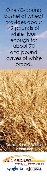 Wheat fact. Learn more at www.allaboardwheatharvest.com.