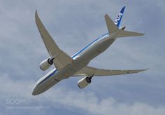 Dreamliner .... by Mongoosed