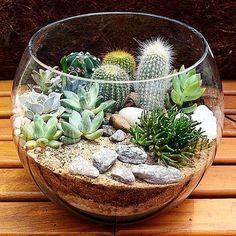 Top 14 Mini Glass Bowl Terrarium Pictures And Ideas - Home Improvement wedding Terrarium succulentes