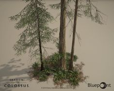 ArtStation - Shadow of the Colossus: Redwood Forest, Alexis Boyer