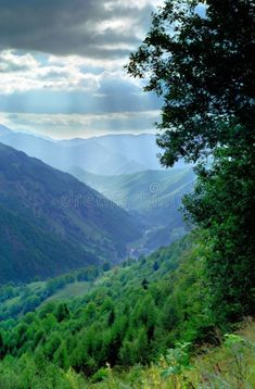 Romanian Valley Carpathian Mountains Stock Image - Image of peace, transylvania: 3178457 Images Of Peace, Valley River, Transylvania Romania, Carpathian Mountains, Continents, Woodland, Europe, Stock Photos, Nature