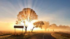 world roads sign nature landscapes fields trees sky sun sunlight sunbeam sunrise sunset bright color Sunrise Wallpaper, View Wallpaper, Wallpaper Backgrounds, Wallpapers, Sunrise Farm, Sunshine Photos, Sunset Landscape, Light Of The World, Landscape Wallpaper