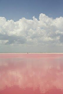 At a beach in the Yucatan, the water is actually pink. (via The Selby)