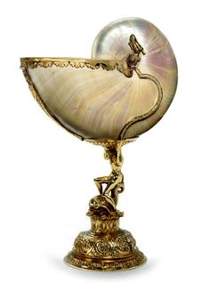 Nautilus Cup. Late 17th Century. the Nautilus Shell is a real treasure. Here they treat it like a treasure.