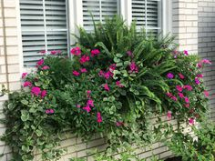 2017 flower box – Container Gardening ideas - How to Make Gardening Window Box Plants, Window Box Flowers, Window Planter Boxes, Flower Boxes, Container Flowers, Flower Planters, Container Plants, Container Gardening, Outdoor Planters