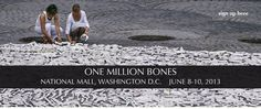 One Million Bones - National Mall, Washington, DC, June 8-10, 2013 - volunteers and donations needed, click through to the website for info!
