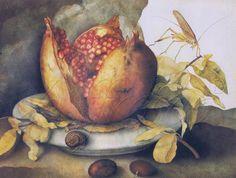Giovanna Garzoni (1600–1670)   Italian Baroque Painter   Still Life, detail