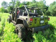 Jeep...road optional