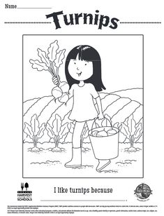 Childrens Coloring Sheet About Cauliflower Free Printable Food Hero