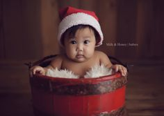 Milk and Honey Photography - Baby Christmas sessions