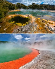 Volcanic pool of champagne, Rotorua, New Zealand