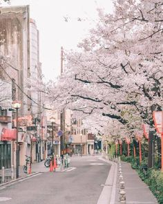 Ways On How To Take Better Landscape Photos Aesthetic Japan, City Aesthetic, Spring Aesthetic, Aesthetic Backgrounds, Aesthetic Wallpapers, South Korea Photography, Japan Street, Dark Photography, Take Better Photos